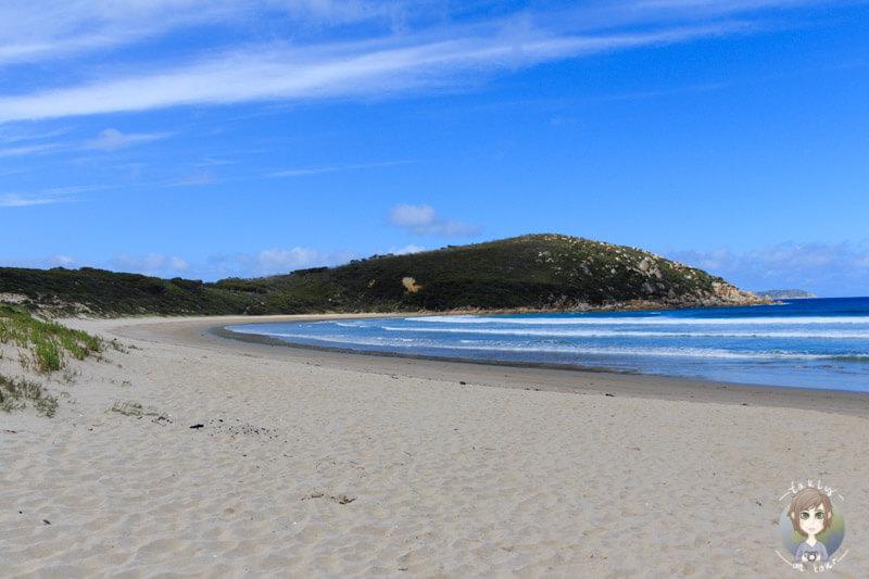 Der einsame Strand in der Picnic Bay, Wilson Promontory Nationalpark, Victoria