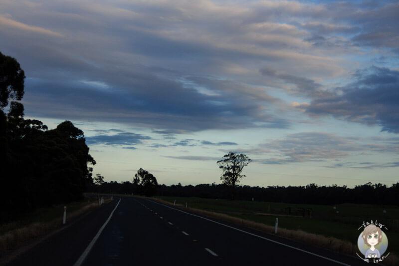 Fahrt über den Princes Highway, Victoria