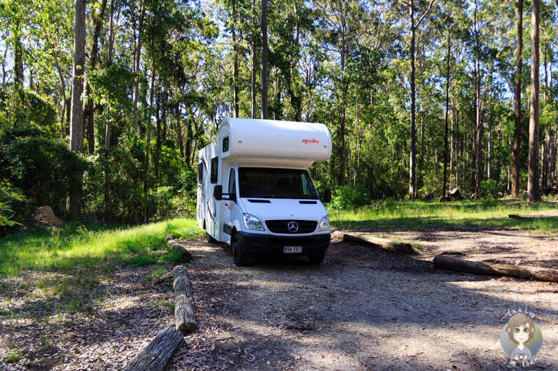 Übernachtung auf dem Bodalla Forest Camping, NSW