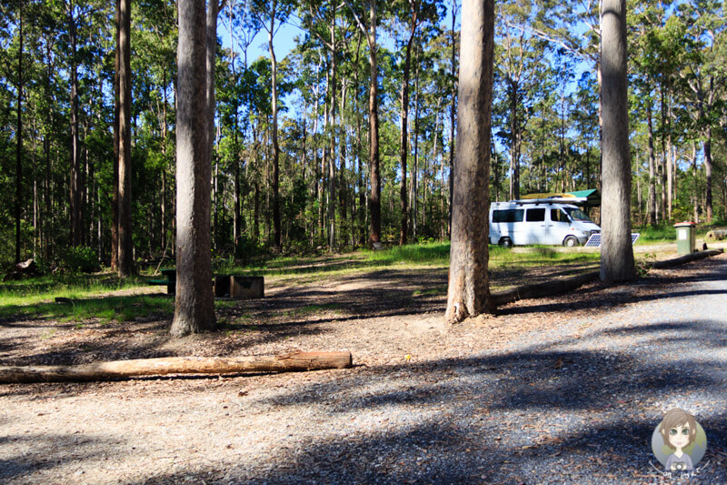 Bodalla Forest Rest Area, NSW