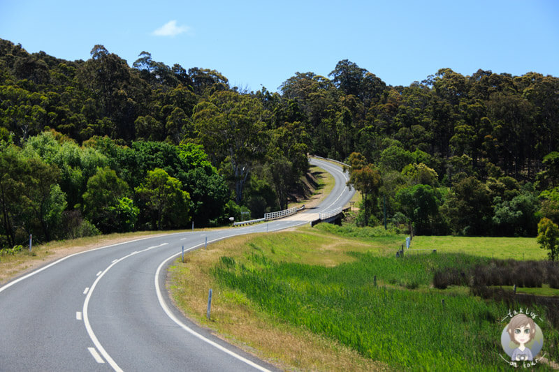 Tourist Drive 9 in New South Wales