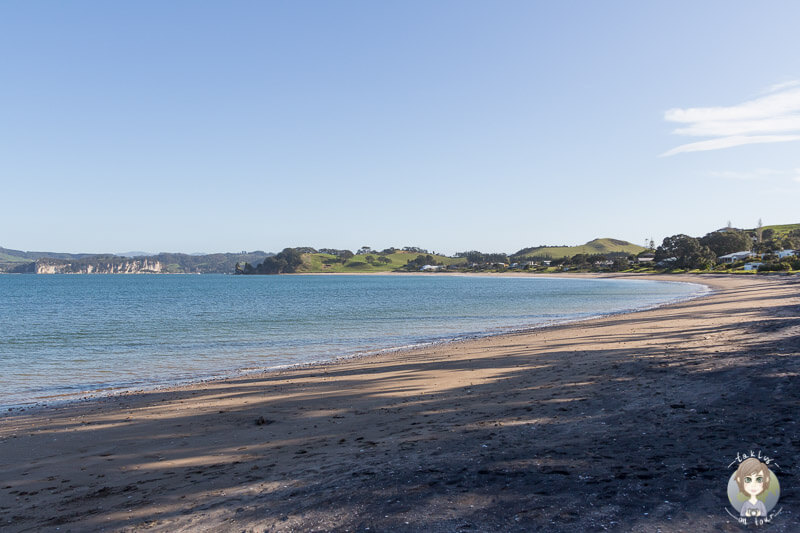 Blick über den Simpsons Beach, Neuseeland
