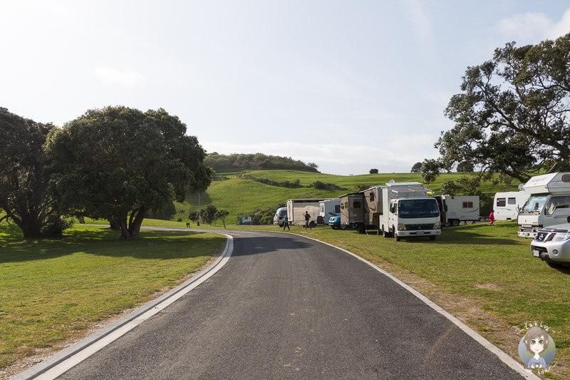 Camperkuscheln an der Anzac Bay - Bowentown Domain