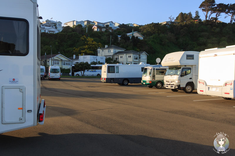 Camping in Wellington