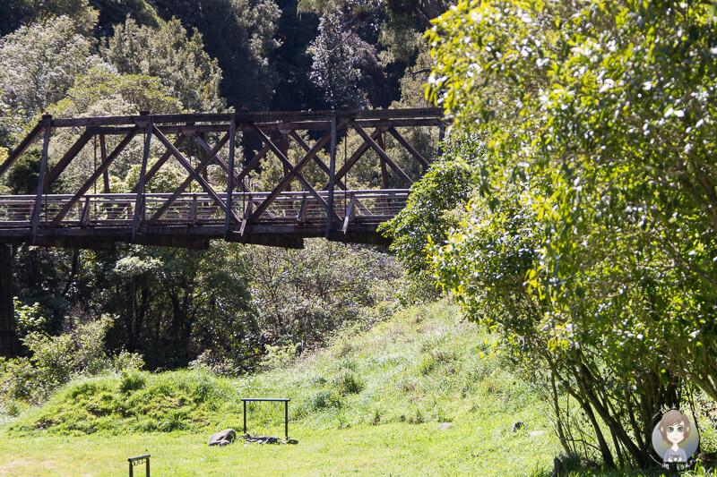 Historische Brücke nahe des Manganuku DOC, Neuseeland