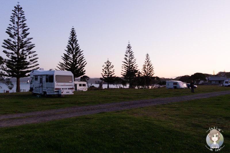 Mercury-Bay-Einfache-Campingplaetze-Neuseeland