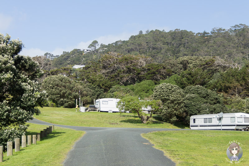 Muriwai Beach Motorcamp