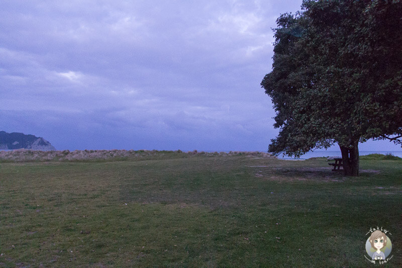 Platz am Meer zum Freedom Camping in Neuseeland