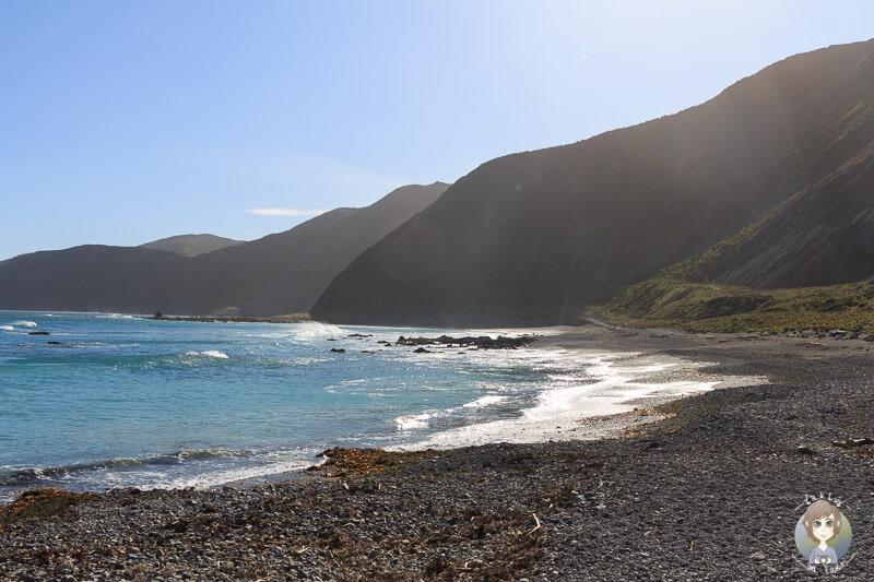 Schöner Blick über die Bucht am Te Kopahou Reserve, Wellington