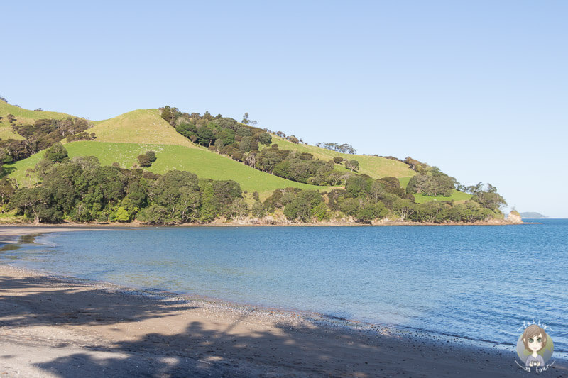 Simpsons Beach in Waikato, Neuseeland