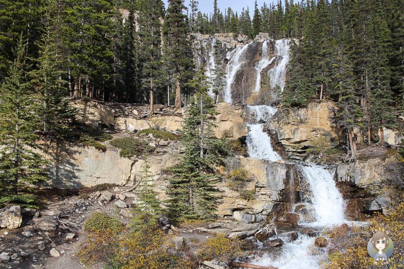Tangle Falls, Icefields Parkway, Alberta, Kanada