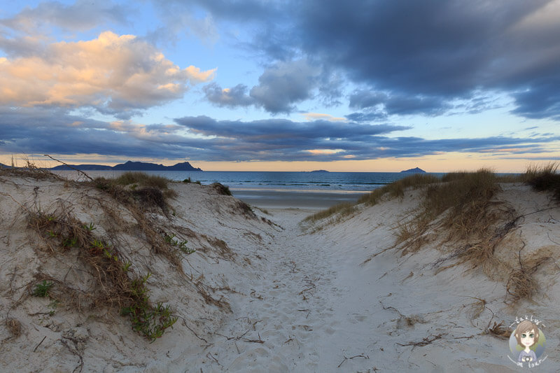 Weg zum Uretiti Beach, Neuzeeland Nordinsel