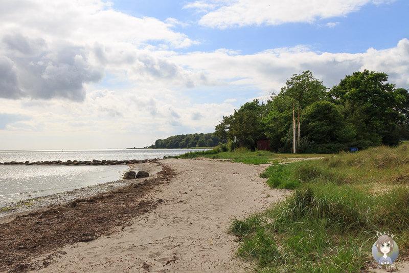 Der schöne Strand von Nysted