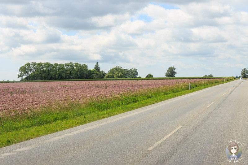 Fahrt nach Nakskov in Dänemark
