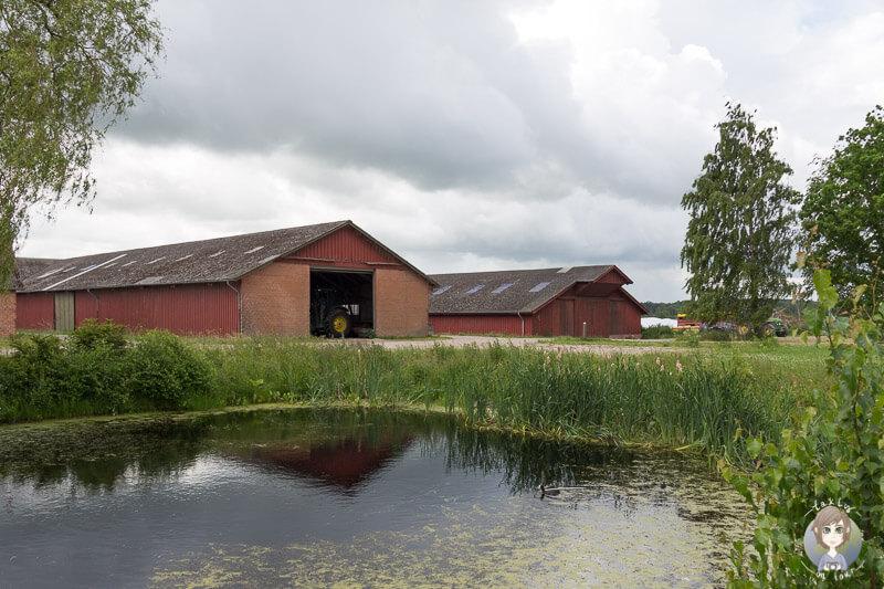 Ein kleiner Teich auf Knuthenlund, Lolland