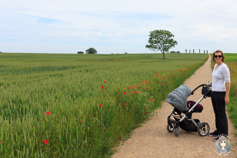 Spaziergang zu den Dodekalitten in Kragenæs, Lolland
