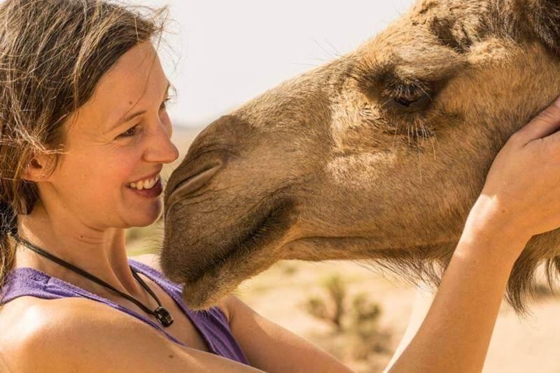 Begegnung mit einem Dromedar - herman unterwegs