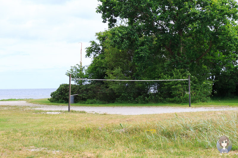 Beachvolleyball in Nysted