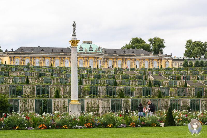 Blick auf das Schloss Potsdam