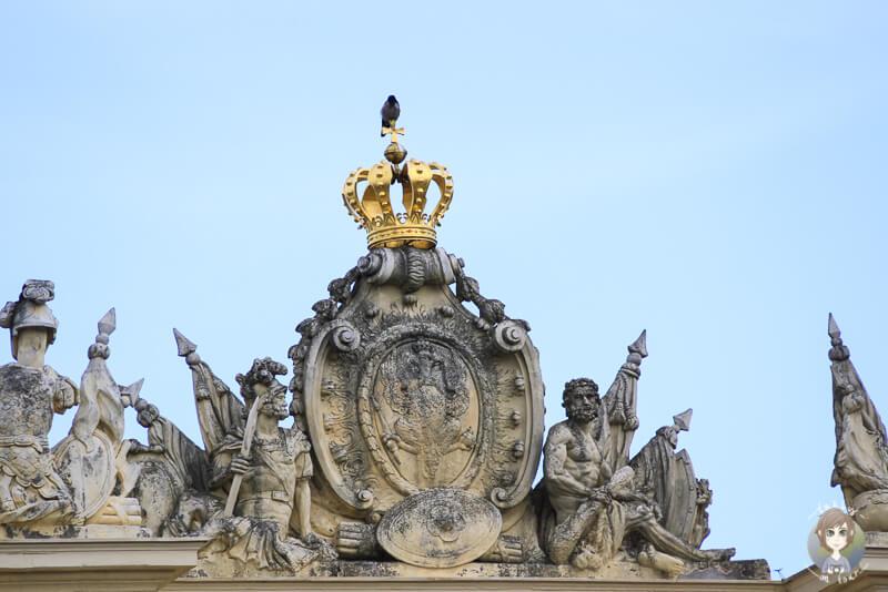Ein Vogel auf der Krone