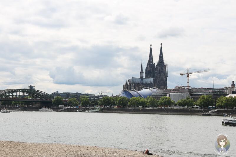 Blick auf den Dom vom Rheinufer Köln