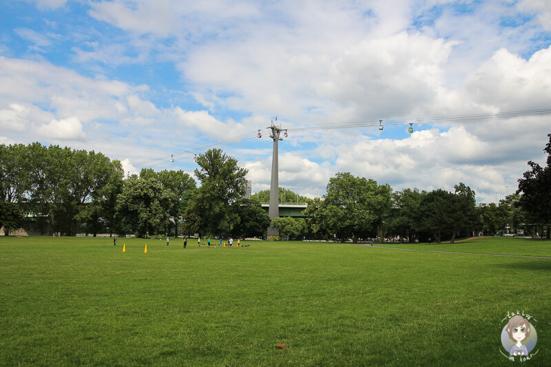 Freie Fläche für alle möglichen Freizeitaktivitäten im Rheinpark