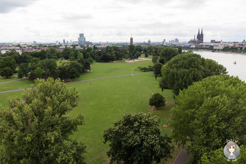 Blick auf den Rheinpark aus der Seilbahn Köln