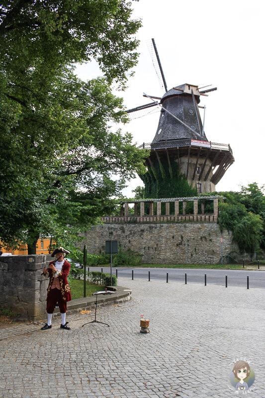 Blick auf die Galerieholländerwindmühle in Potsdam