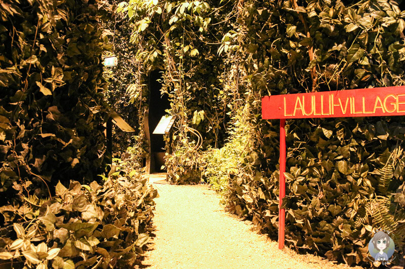 Willkommen im Busch - Klimahaus