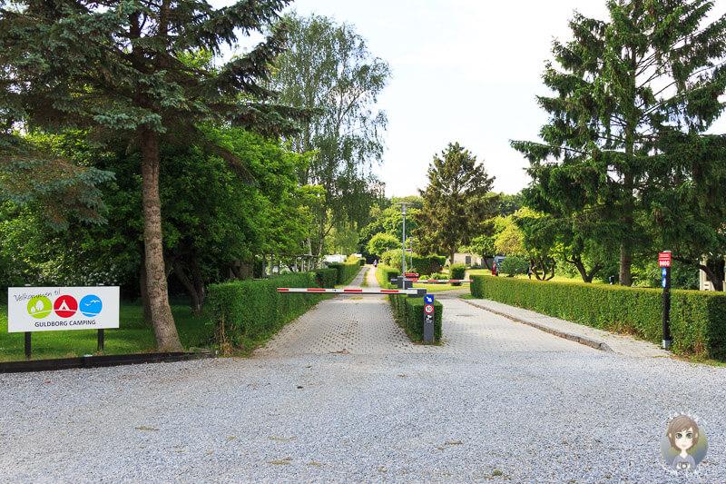 Einfahrt Guldborg Camping
