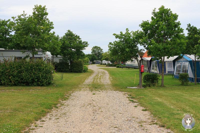 Stellplätze auf dem Campingplatz in Kragenæs, Lolland
