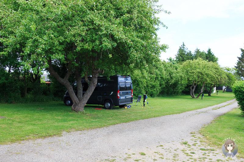 Stellplätze auf dem Guldborg Camping in Lolland