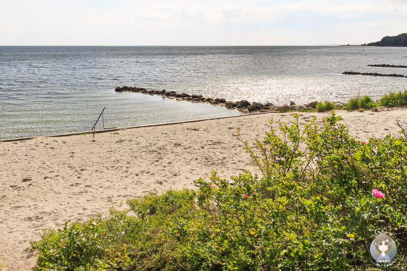 Strand in Nysted
