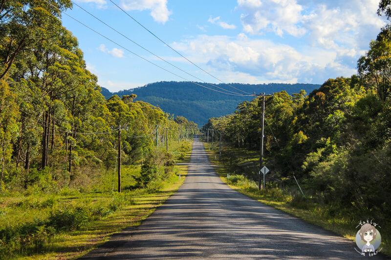 Bendeela Road im Kangaroo Valley, NSW
