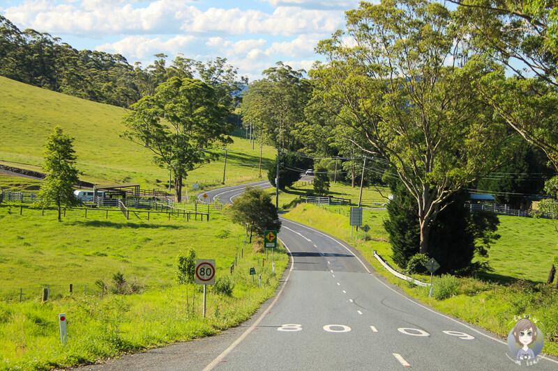 Fahrt Richtung Kangaroo Valley