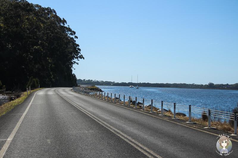 Fahrt am Wasser entlang über den Princes Highway, NSW