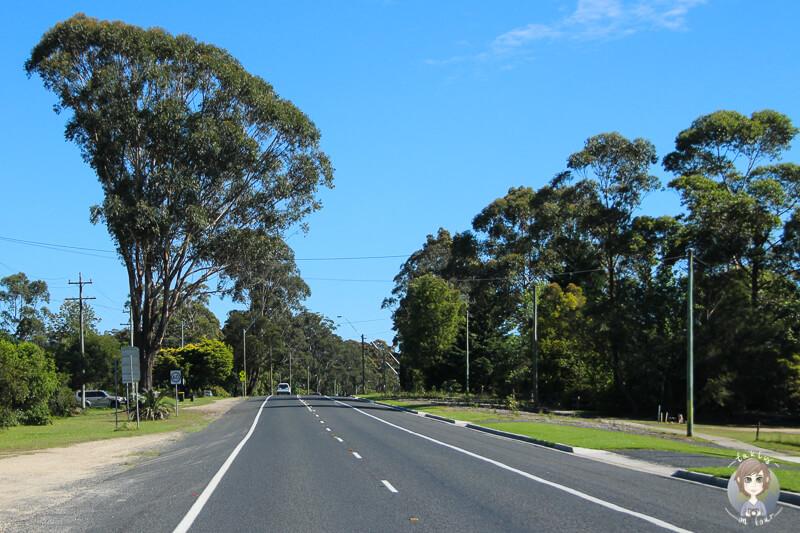 Fahrt über den Princes Highway, NSW