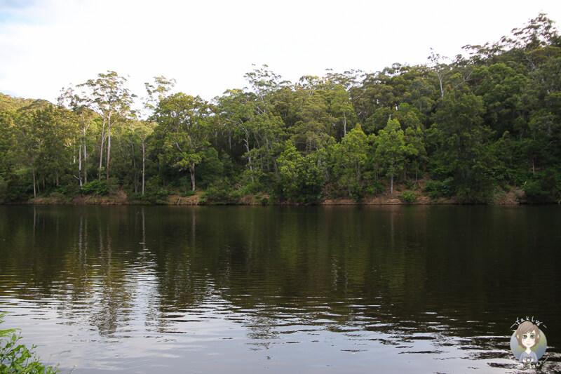 Fluss durch das Kangaroo Valley