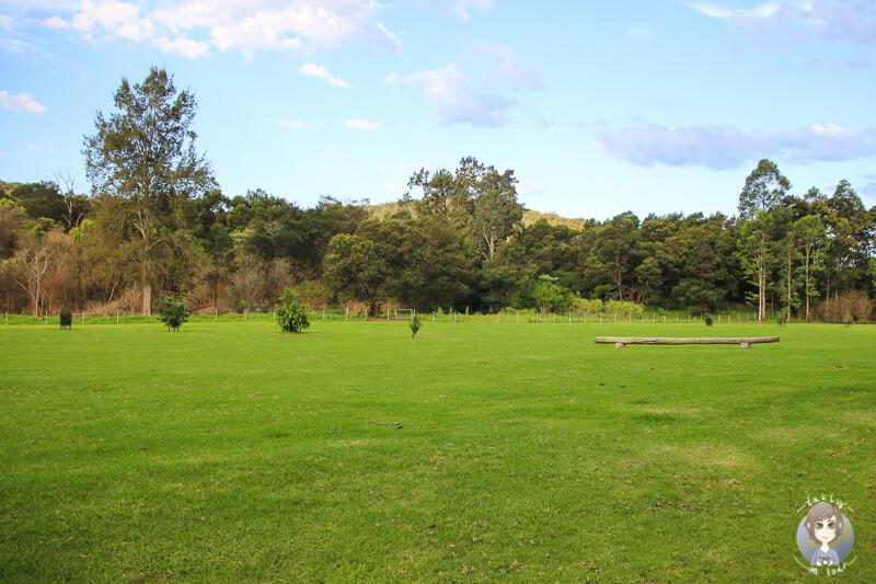 Großer Campingplatz in der Bendeela Recreation Area, Kangaroo Valley