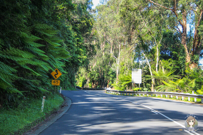 Kurvige Strecke Richtung Kangaroo Valley, Australien