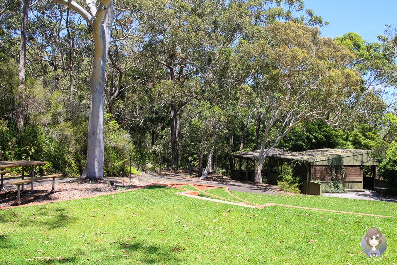 Picknickplätze im Botanischen Garten, Booderee National Park, NSW