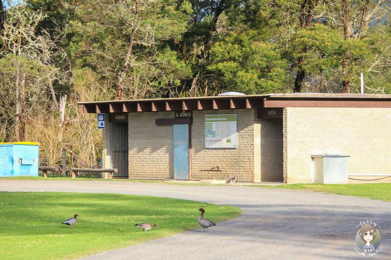 Sanitäranlagen in der Bendeela Recreation Area