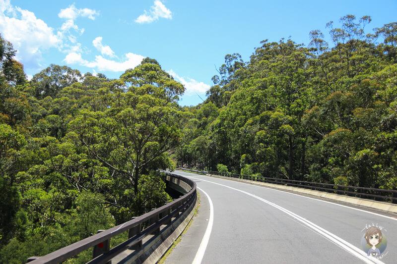 Schöne Natur auf dem Weg zum Booderee-Nationalpark