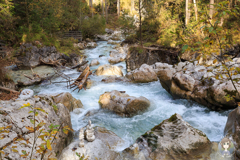Schöner Blick vom Naturlehrpfad im Zauberwald am Hintersee