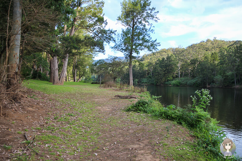 Spaziergang am Fluss in der Bendeela Recreation Area, NSW, Australien