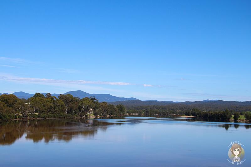 Toller Blick aus dem Autofenster in Australien