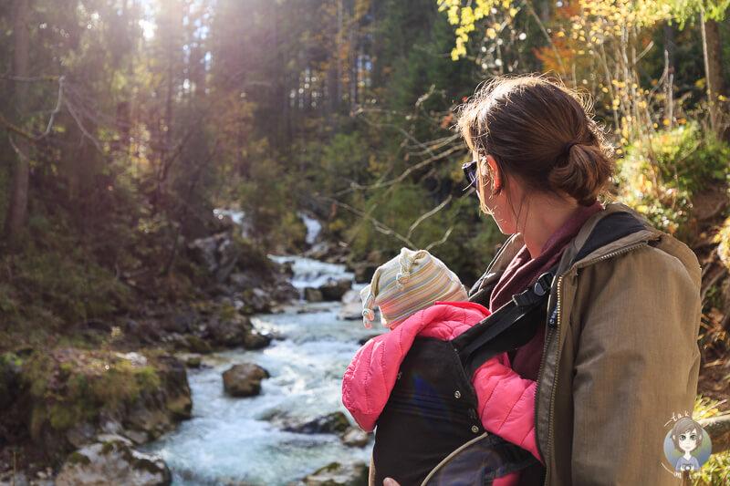 Wandern mit Baby im Zauberwald
