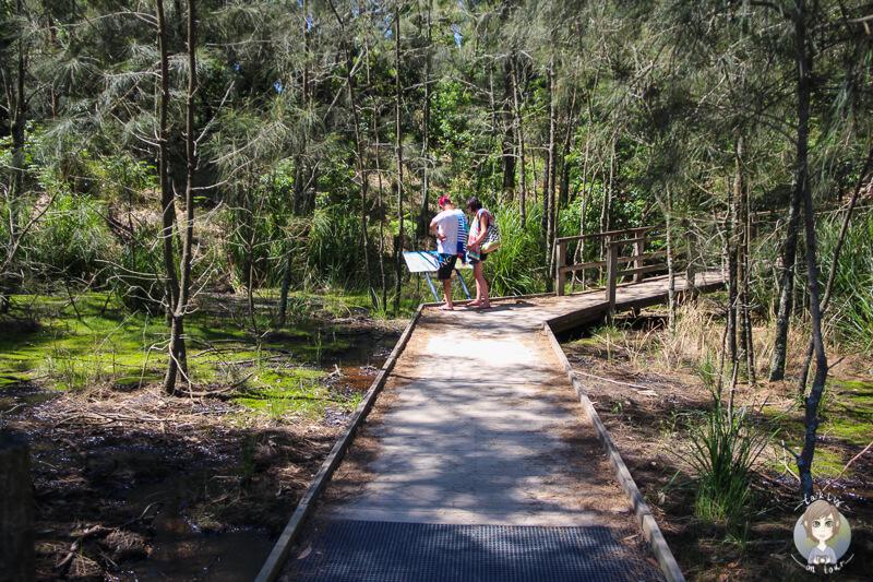 Der Weg zum Murrays Beach