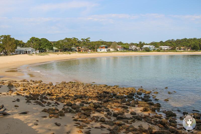 Bundeena Beach mit Haeusern im Hintergrund