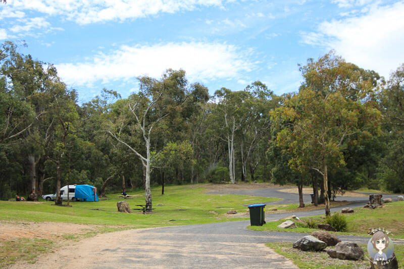 Campingplatz Old Ford Reserve Megalong Valley Blue Mountains National Park